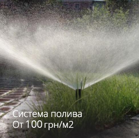 8_pOi6NHx